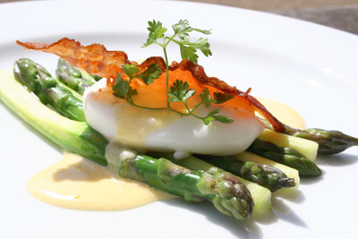 Asparagus, Warm Poached Egg & Hollandaise Sauce picture
