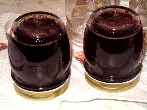 Black Currant Jelly picture
