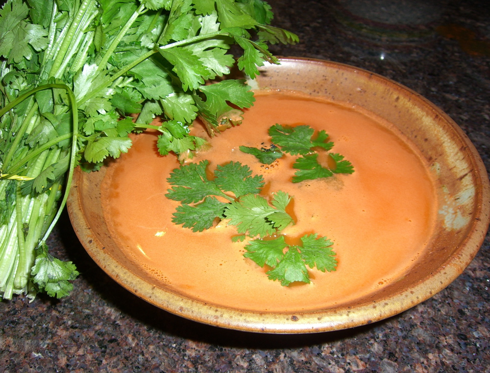 Carrot, Avocado & Cilantro Soup picture