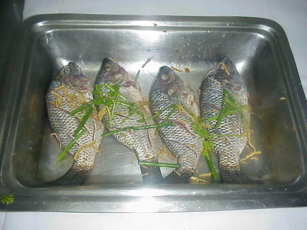 STEAMED FISH WITH NON YA CHILLI SAUCE picture