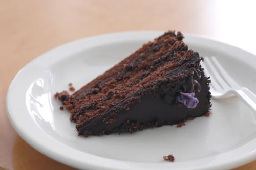 Chocolate Pastry Torte picture