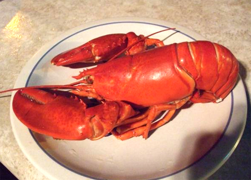 Cold Boiled Lobster picture