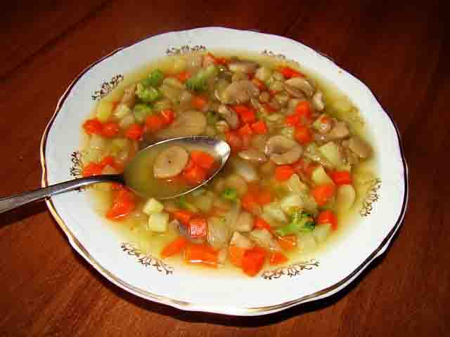 CREAM OF MUSHROOM AND VEGETABLE SOUP  picture