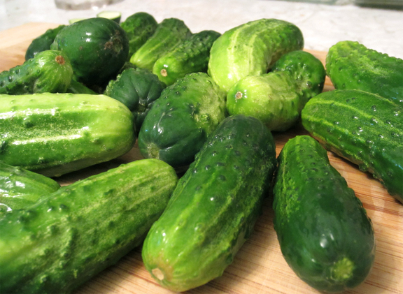 Sweet Cucumber Pickles picture