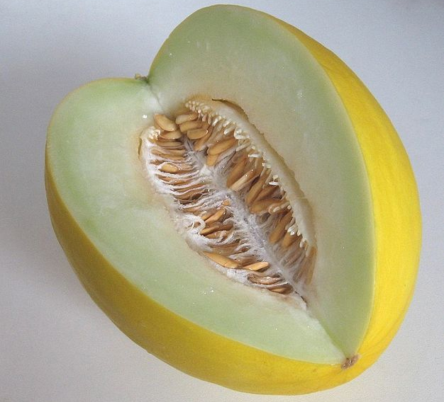 Gingered Honeydew Melon picture