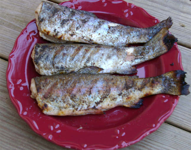 Grilled Trout picture