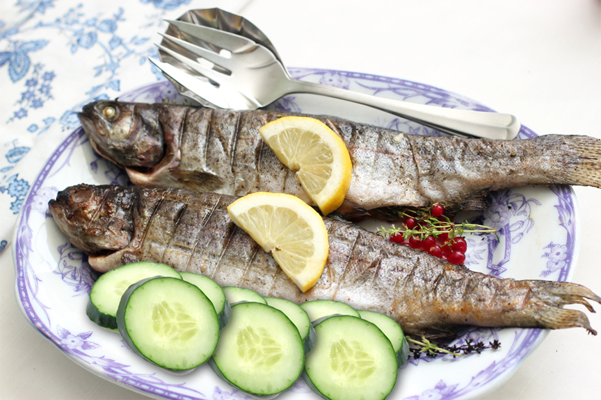 Grilled Trout with Cucumber picture