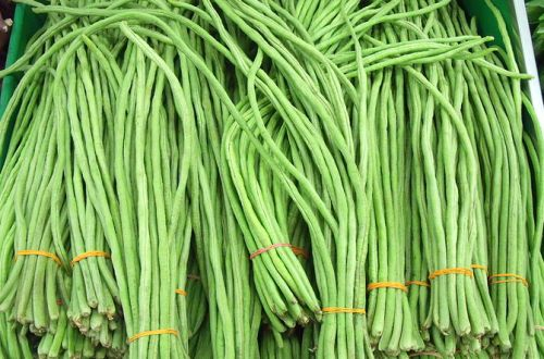Long Beans 1