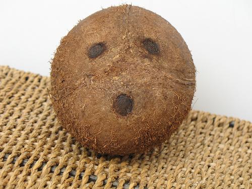 Coconut eyes