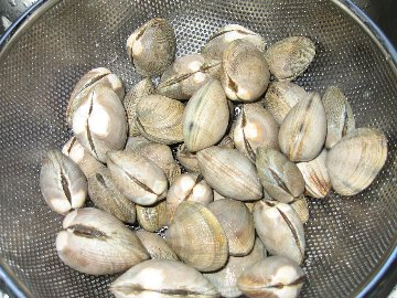 Steamed clams in the steamer basket