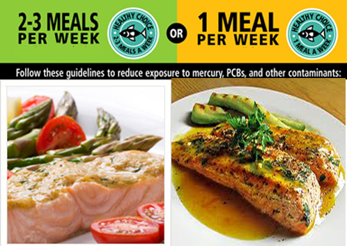 Top 5 low mercury fish recipes by for Fish with low mercury