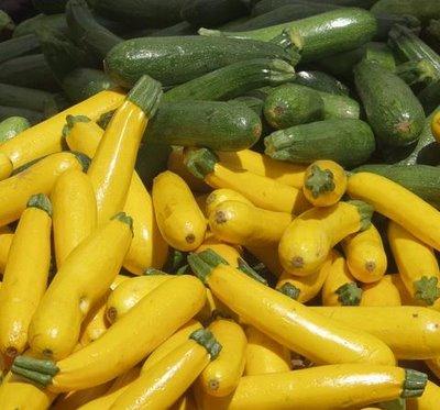 storing-zucchini