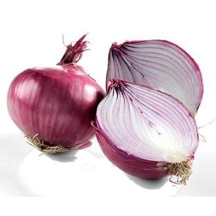 Storing Onion