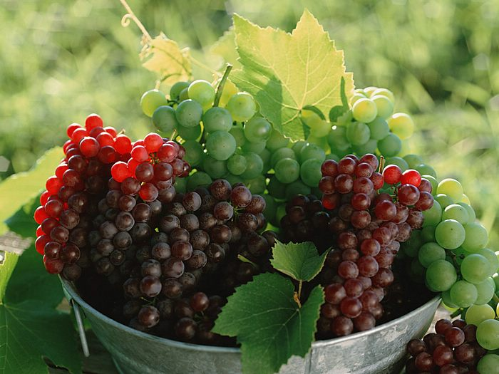 Health Benefits Of Concnetrated Grape Juice