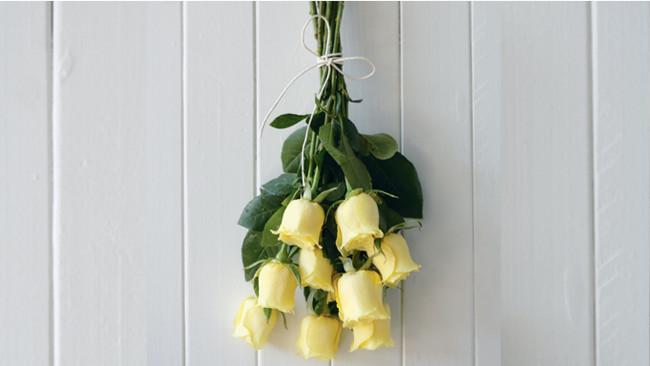 Dry roses 1