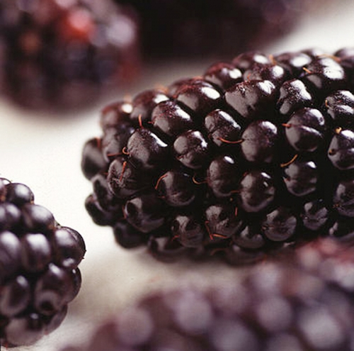 Blackberries for Beautiful Skin
