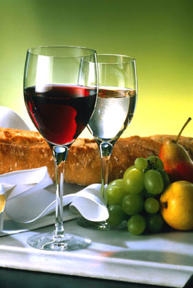Spain Wine Tour--red and white wines