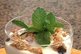 Creamy Frozen Yogurt