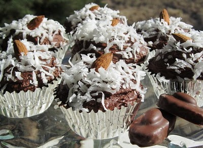 Coconut Cupcakes With Chocolate Frosting