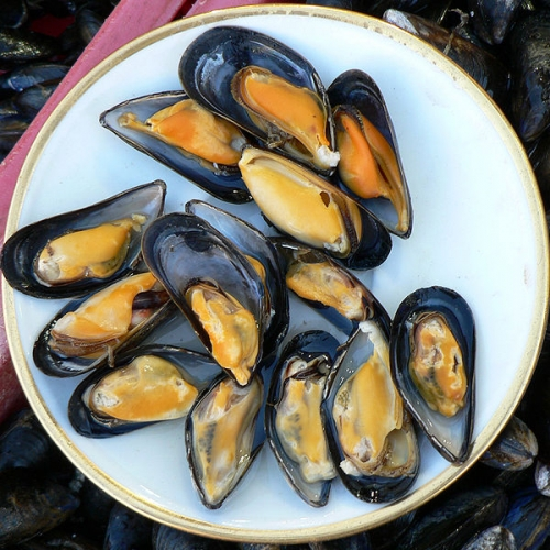Mussels - A Sustainable Seafood