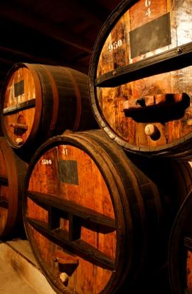 Washington wine tour--wine cellar