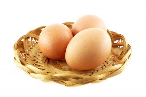 Storing Eggs