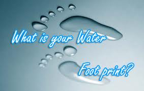 Water footprint 5