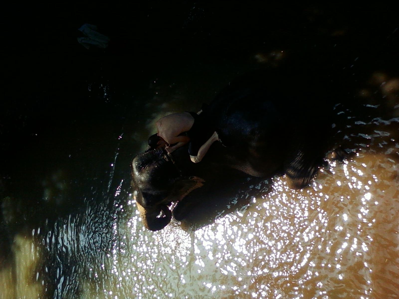 Goan style bathing