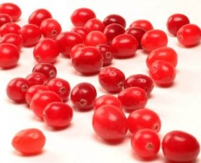 Cranberries as Supplements