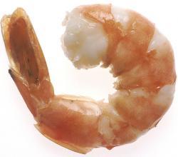 Succulent shrimp