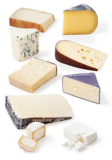 soft cheese varieties
