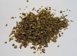 Oregano Medicinal Uses -- Oregano