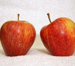 Side effects of apple