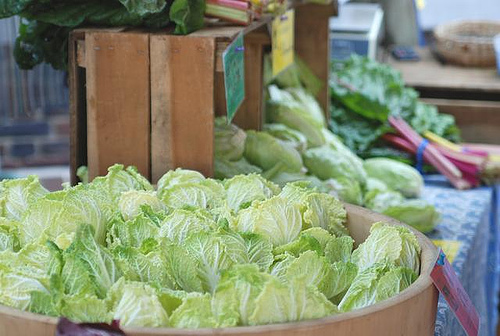 storing-cabbages