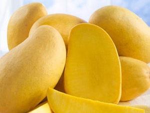 Ripe raw mango