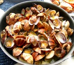 Clams - A Sustainable Seafoood