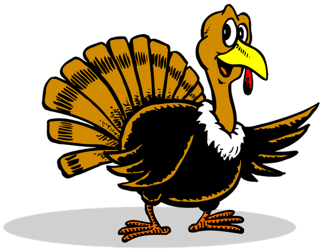 National Turkey Day