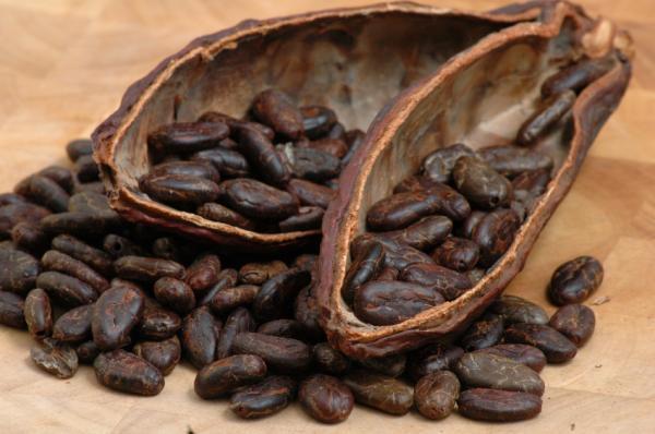 Cocoa 1