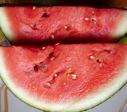 Fruits for curing dehydration - Watermelon