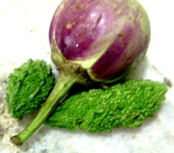 Eggplant with bitter gourd