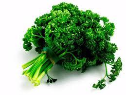 keep parsley fresh