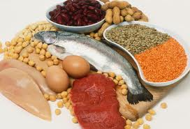 All Protein Diet Menu-High Protein Foods