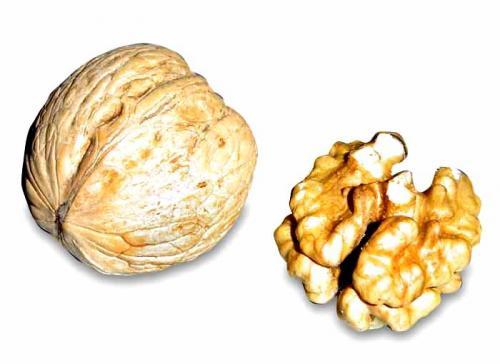 Walnut during pregnancy