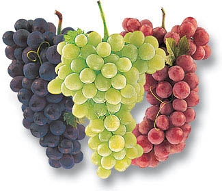grapes in a cluster