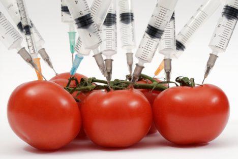 GMO foods 2