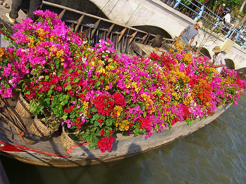 Docked at My Tho, this boat unloads pots of bougainvillea for the Tet flower market.www.uncorneredmarket.com/2007/02/floating-life-along-the-... Bougainvillea Boat - Mekong Delta
