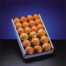 Storing oranges in boxes so that they remain fresh for several weeks.