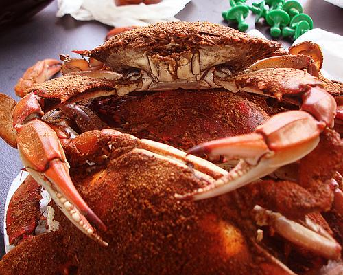 Storing Blue Crab