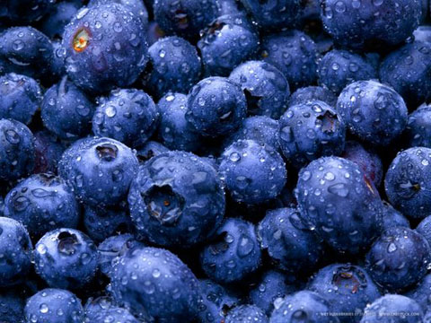 Effects of antioxidants in blueberries