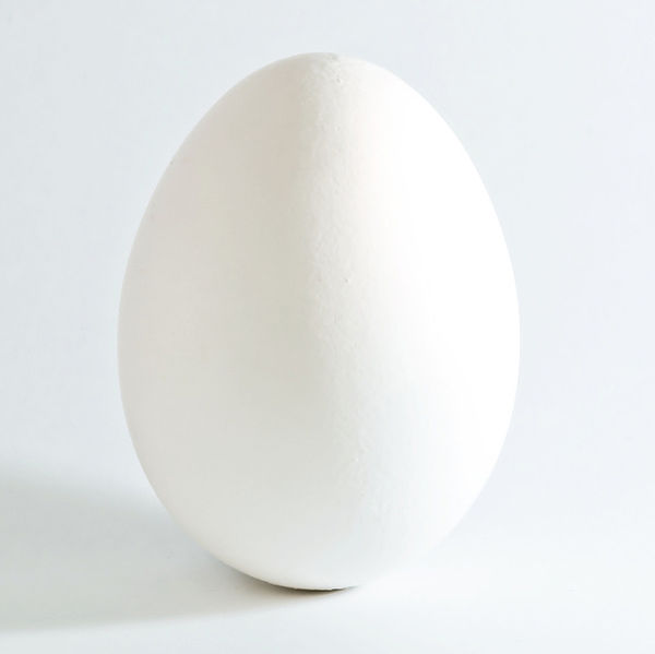 Egg for Skin Care